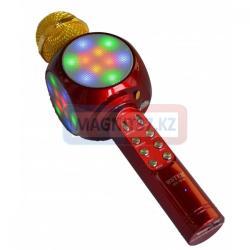 Микрофон для караоке 1816